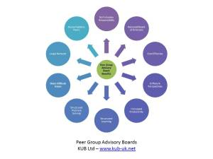 Peer Group Advisory Boards